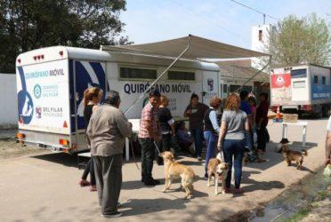 Quirófano móvil gratuito para perros y gatos en Pilar