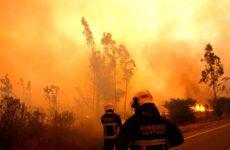 Argentina envió brigadistas a Chile para colaborar contra los incendios forestales